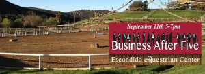 Escondido Chamber mixer